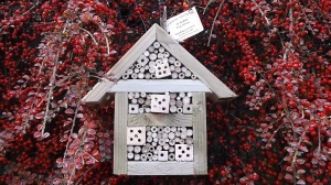 Bug house made from recycled wood